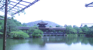 Hashidono