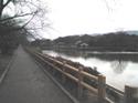Nagaoka1_2